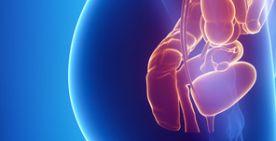 Kolorektale Chirurgie (Kolorektalchirurgie): Dickdarm-OP und Mastdarm-OP