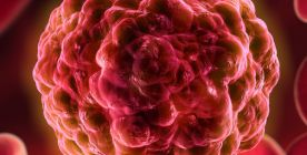 Krebsvorsorge (Krebsfrüherkennung, Krebs-Check-Up)
