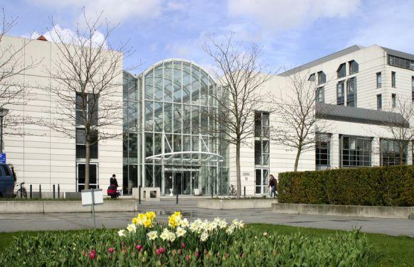 Prof. - Markus Scheibel - Charité – Universitätsmedizin Berlin