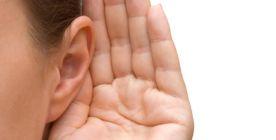 Das Ohr - Anatomie, Funktionsweise und Erkrankungen